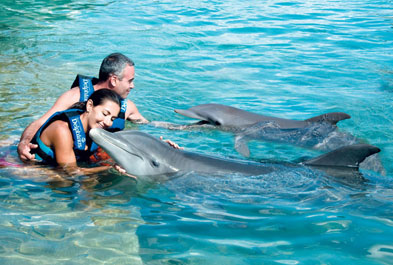 Tours in Cancún and Riviera Maya Delphinus Primax & Dolphin Ride